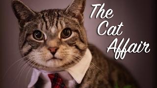 The Cat Affair