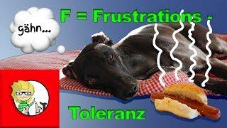 F = Frustrationstoleranz beim Hund - die besten Übungen für den Alltag