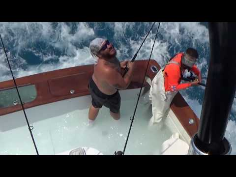 FL Keys Record 70 Sailfish Caught And Released In One Day - Main Attraction Fishing Charters