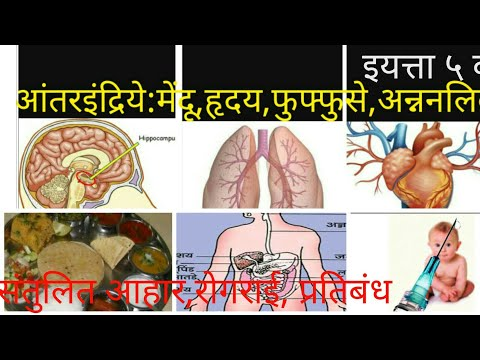 ५ वी विज्ञान||Maharashtra state board text books for mpsc,psi,sti,asst talathi exams||