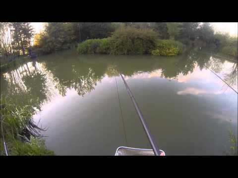 Match Fishing-Clivey Fishery