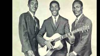 TOOTS & THE MAYTALS - LOVE SO STRONG