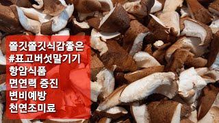 표고버섯말려보기