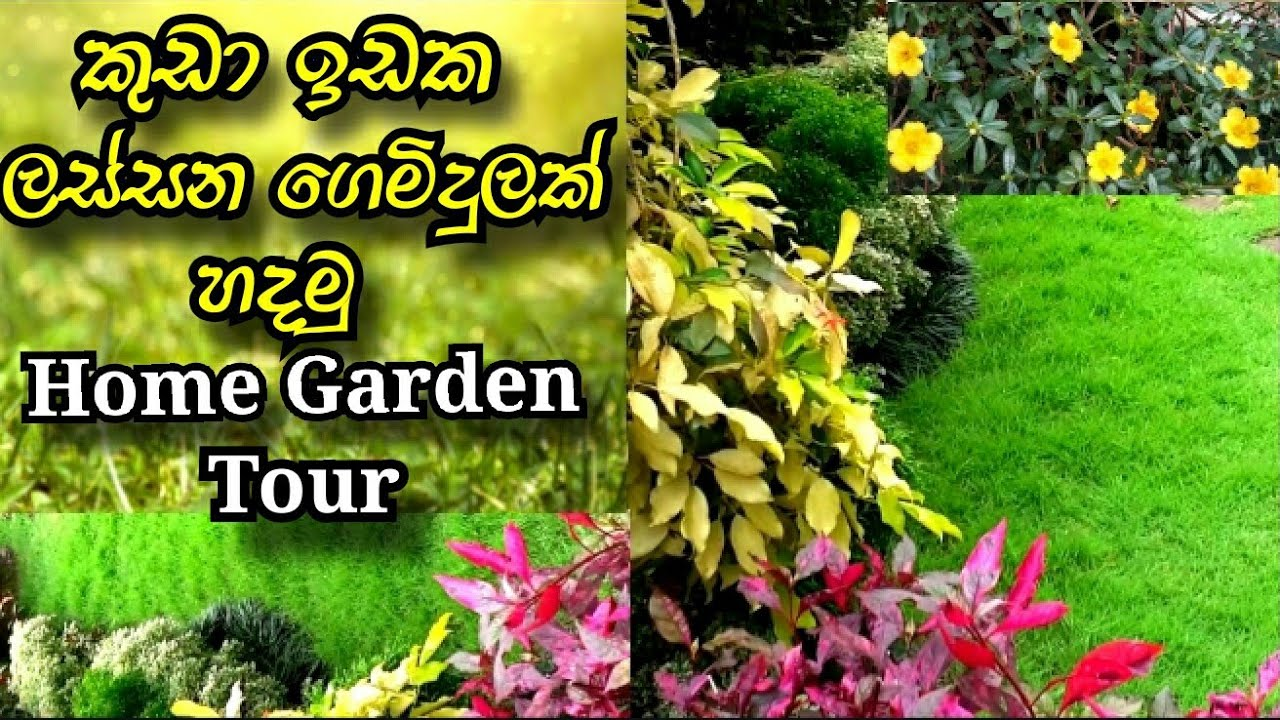 Home Garden Tour October Youtube,Front House Simple Landscape Design In The Philippines