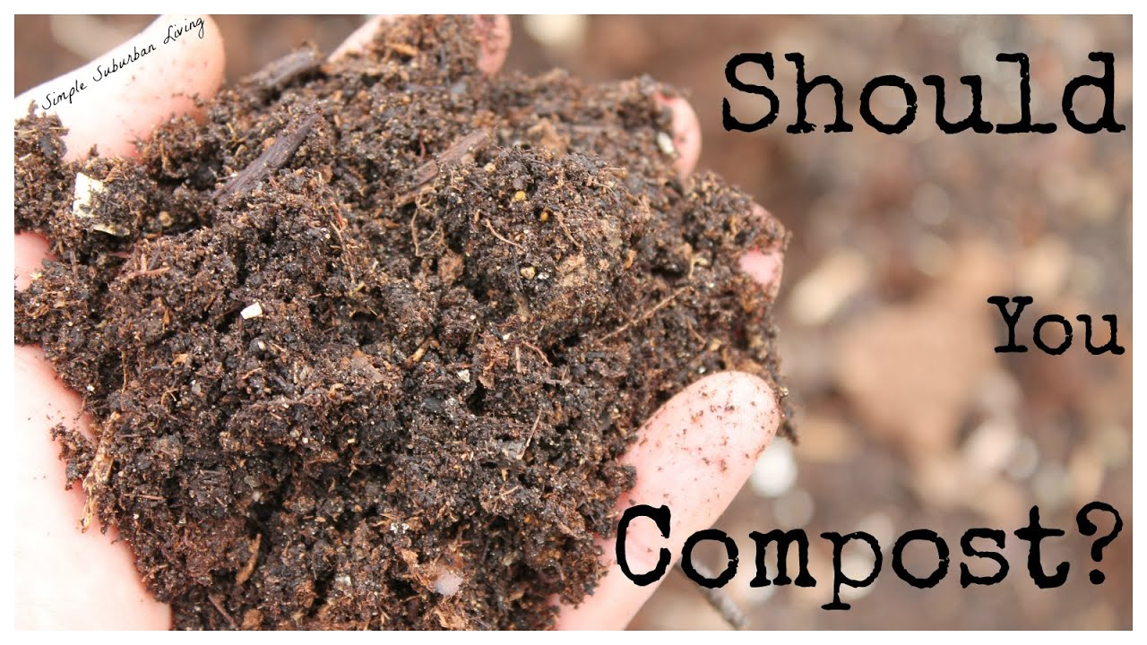 easy composting method the best time to start is now youtube