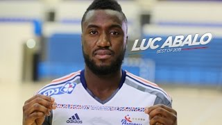 Luc Abalo - Best of 2015 (HD)