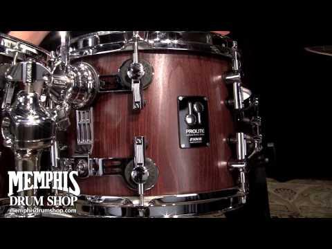 Sonor ProLite Studio 1 Drum Set 20/10/12/14 - Nussbaum Satin Gloss Stain - Play by Adam Nussbaum