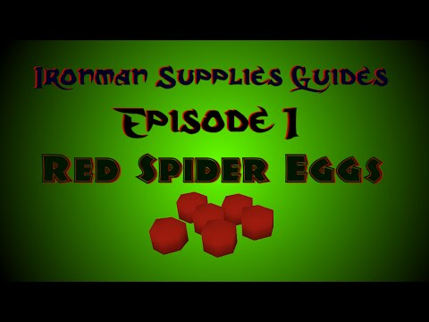 OSRS Ironman Supplies Guide Ep. 1 - Red Spider Eggs & Spidines! Best Method