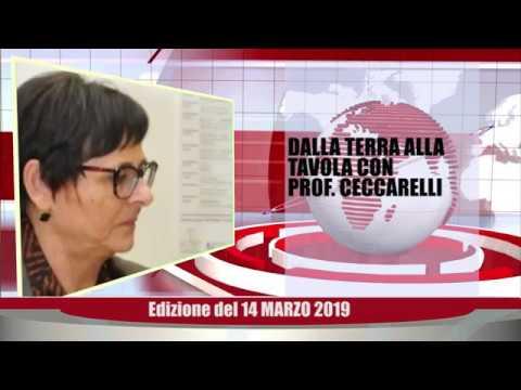 Velluto Notizie Web Tv Senigallia Ed  14 03 19