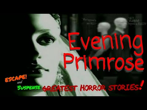 """""""Evening Primrose"""" Classic Radio's Greatest Horror Stories from Suspense & Escape"""