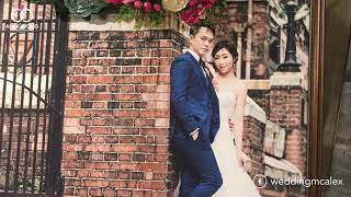 Wedding MC Alex 專業婚宴司儀 新人評語 Crystal & Elvis's wedding