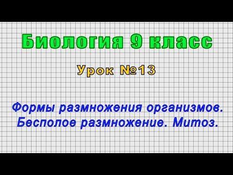 Биология 9 класс (Урок№13 - Формы размножения организмов. Бесполое размножение. Митоз.)