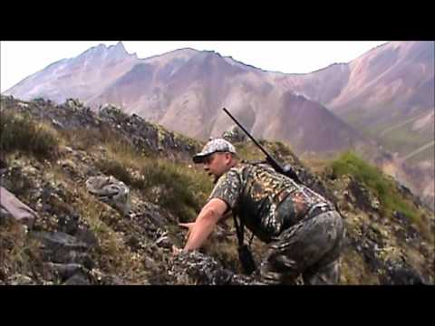 Hunting Dall Sheep, Caribou, Moose With Arctic Red River Outfitters, NWT, Canada #2