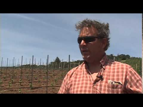Oregon winemakers warn against herbicide 2,4-D - May 12th, 2014