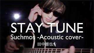 STAY TUNE / Suchmos(アコギcover) 田中雄也