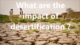Desertification (causes, impact and solutions)