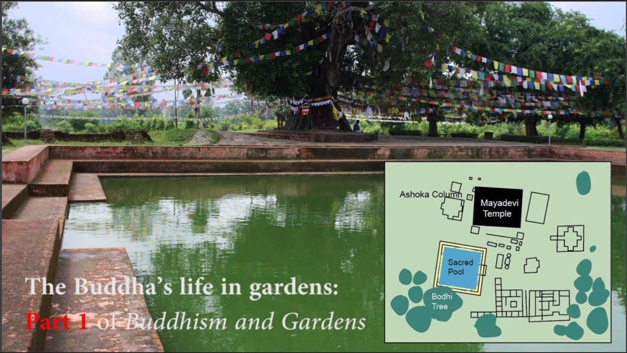 Buddhist Garden Design Image the buddha's birth in lumbini garden: pt1 of buddhism and gardens