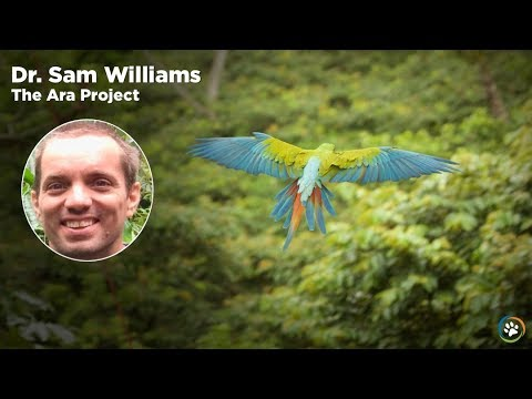 WCN Fall Expo 2017 - The Ara Project- Dr.Sam Williams