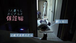 酔った主人を心配する猫の反応が泣けた…|ロイヤルカナンダイエット