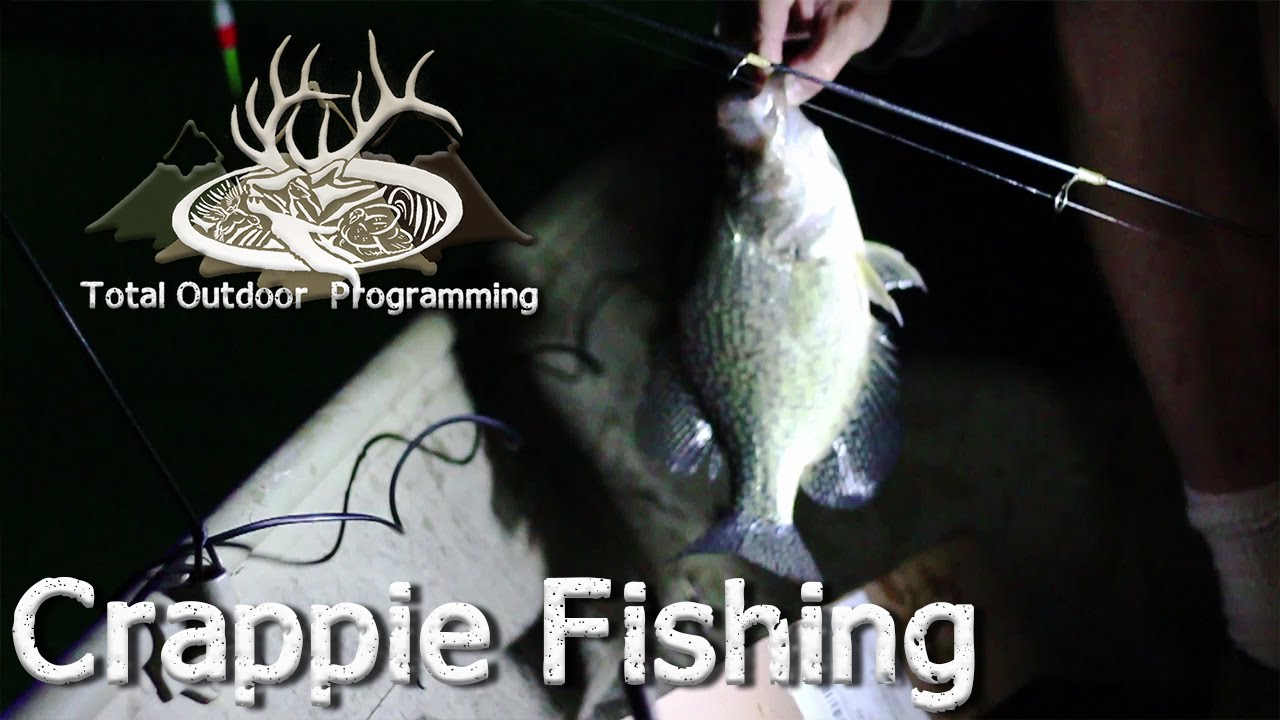 how to catch crappie at night using a light, night time pan, Reel Combo