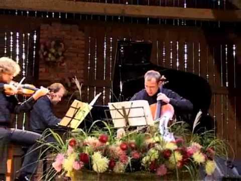 Brahms Trio op. 8, 1st mov..wmv