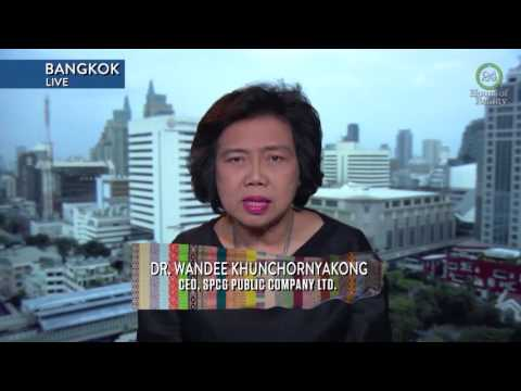 Solar Power Company Founder Discusses Starting Her Own Business in Thailand