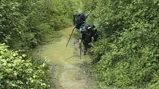 COMPOSTELLES NOTRE CHEMIN (volet 5)Les Landes--Pays Basque