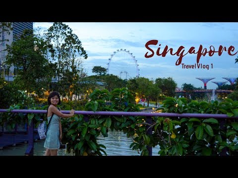 Singapore Travel Vlog 1 | Where to stay? | Little India, Chinatown | With Quick Travel Tips!