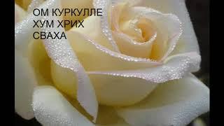 Привлечь любовь, привлекательность, красоту, магию, целительные силы!!!