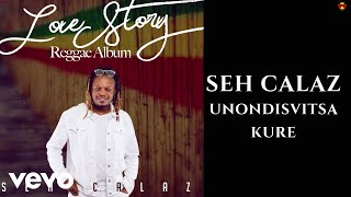 Seh Calaz - Unondisvitsa Kure (Official Video)