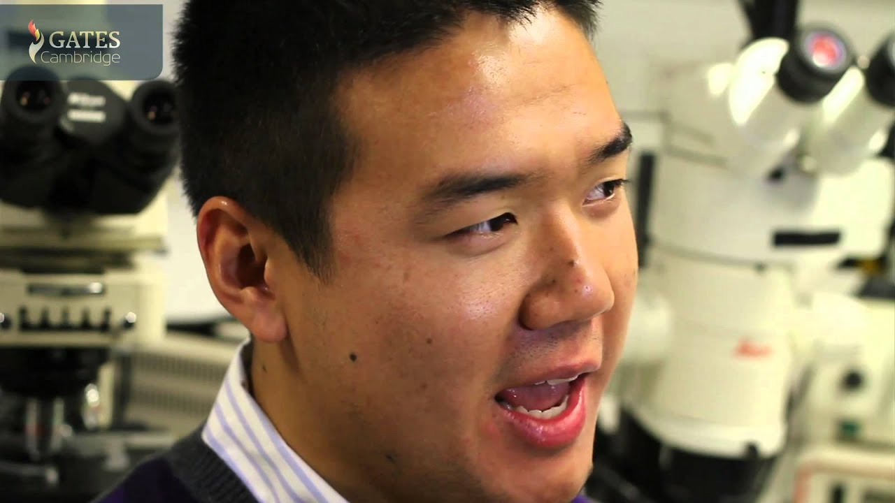 Stan Wang: the future of regenerative medicine