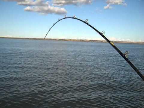 Delta Pro Fishing - Ryan on Sturgeon
