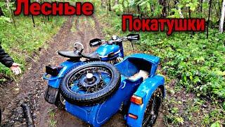Лесные покатушки на мотоцикле урал.