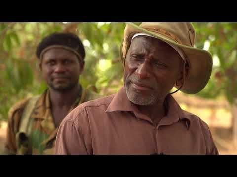 BBC News - Casamance rebels threaten return to war over Senegal mine project