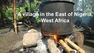 A TYPICAL VILLAGE IN SOUTH-EASTERN NIGERIA  AMIRI IMO STATE VLOG