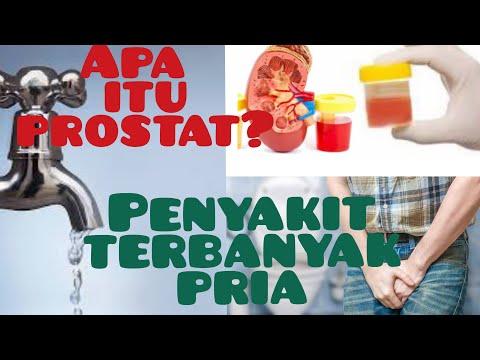 apa itu sakit prostat