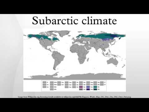 Subarctic climate
