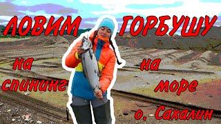 Ловля морской горбуши на побережье Сахалина Отличный клёв Соломка и Юкола из горбуши