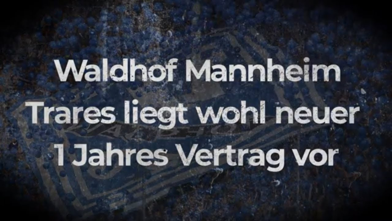 Waldhof Mannheim Trares liegt wohl neuer 1 Jahres Vertrag vor  ⚽⚽⚽