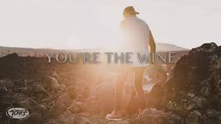 RICHLIN - You're the Wine (Visualizer)