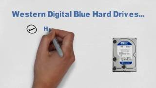 Western Digital Hard Drives Colors - What they depict?