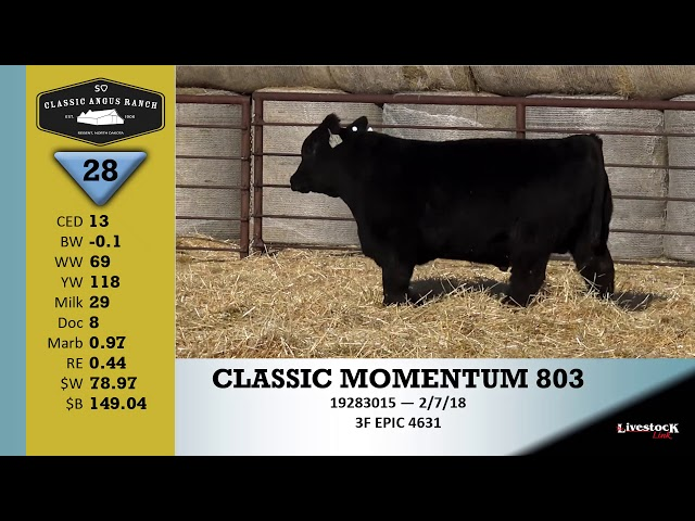 Classic Angus Ranch Lot 28