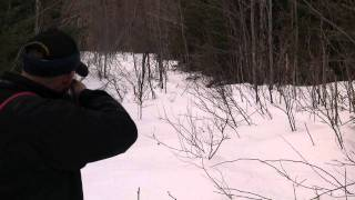 Maine Rabbit Hunt (beagle Music)
