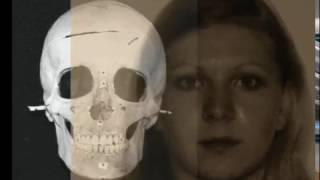видео Портретная экспертиза