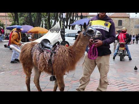 Day Trip to Bogotá, Colombia