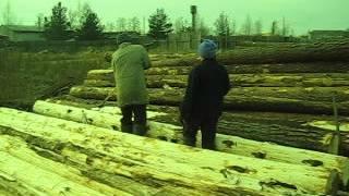 Коренее брёвен(Срубы из Псковской области:Чаша, Канадка, Норвежская рубка, Лафет. http://domlafet.ru http://vk.com/domlafet Russia log cabin, Russia log house., 2012-11-11T16:51:54.000Z)