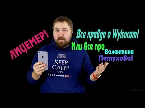 Wylsacom   ВСЯ ПРАВДА О ВИЛСАКОМ   Wylsacom ИЛИ ВАЛЕНТИН ПЕТУХОВ   ОБЗОР   РАЗОБЛАЧЕНИЕ