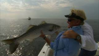 Big Striper Fishing Offshore of Block Island Rhode Island