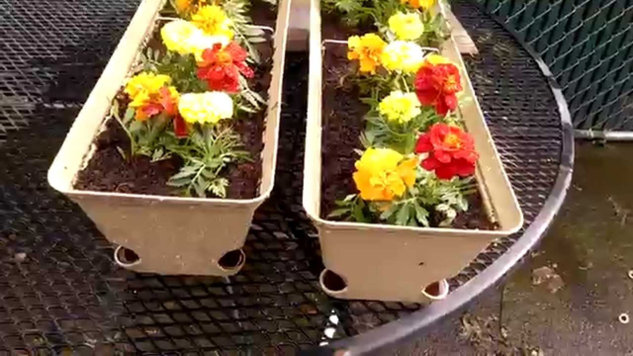 cheap self watering planter boxes brobrycegardens youtube