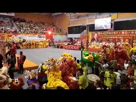 Energetic lion, dragon and unicorn displays wow crowd
